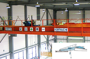 Top running overhead crane (duble)